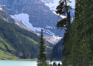 Lake Louise Trail